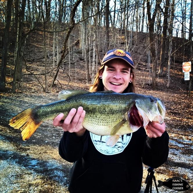 big-bass